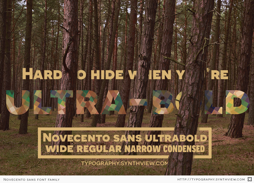 Hard to hide when you're ultrabold. Novecento sans ultrabold: wide, regular, narrow, condensed